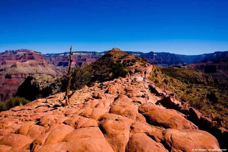 Grand Canyon, South Kaibab Trail, shot @ 5308 feet