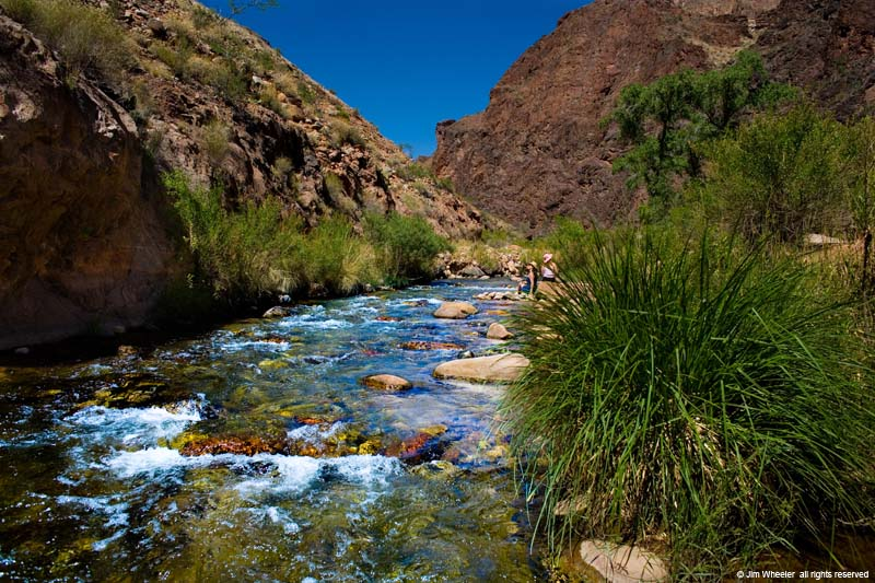 Bright Angel Creek near Phantom Ranch at the bottom of Grand Canyon, shot @ 2779 feet