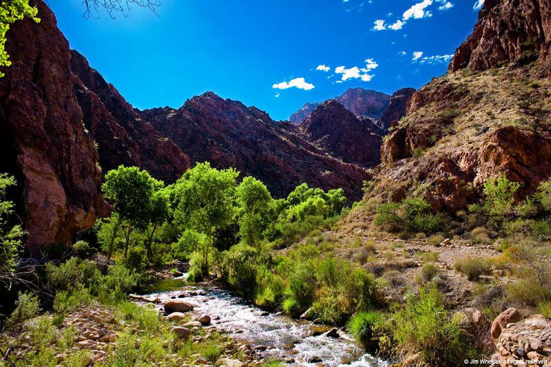 Bright Angel Creek near Phantom Ranch at the bottom of Grand Canyon, shot @ 2636 feet